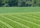 W spisie rolnym wzięło udział 50 tys. rolników