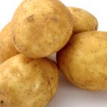 Przeciwdziałanie suszy w ziemniaku