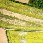 Szacowanie szkód w uprawach rolnych