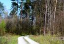 Duże inwestycje klimatyczne czekają wszystkie polskie miasta