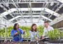 Jak innowacje wpłyną na rolnictwo zrównoważone?