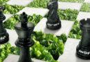 Herbicydowy SZACH MAT od UPL